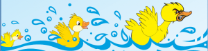 Duck Races Banner